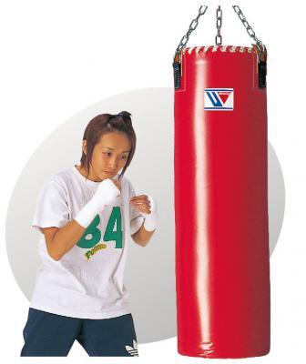 GT-9900 Training Bag