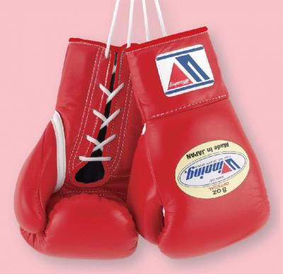 MS-200 8oz Pro Boxing Gloves