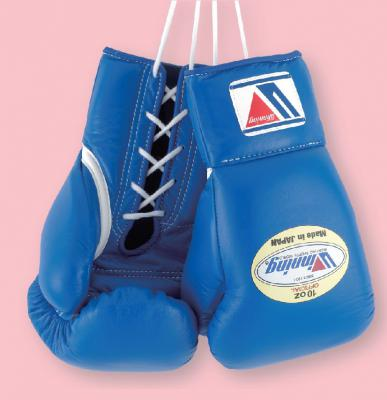 MS-300 10oz Pro Boxing Gloves